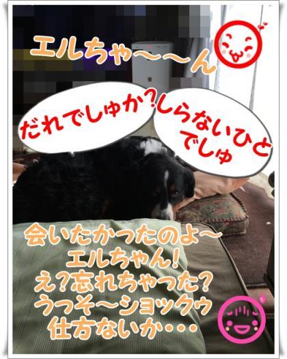 060_convert_20151206122236.jpg