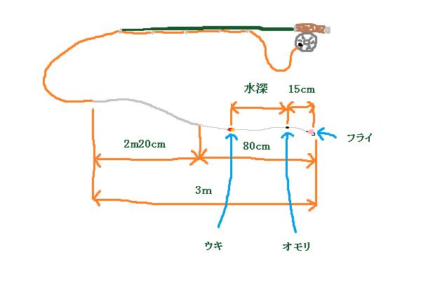 システム 鯉