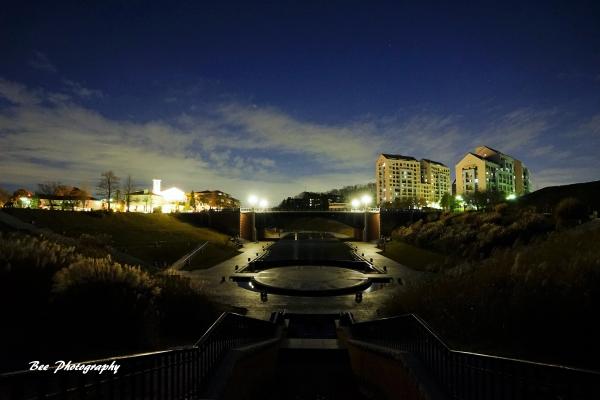 bee-長池見附橋6601