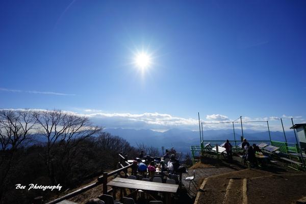 bee-陣馬山6733