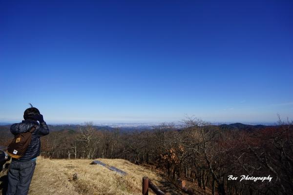 bee-陣馬山6735