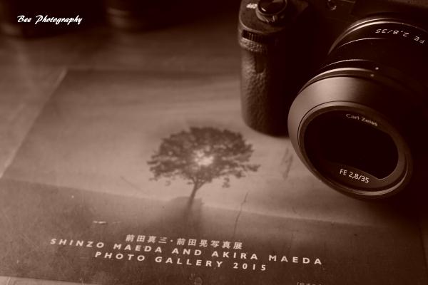 bee-camera.jpg