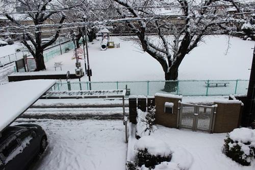 IMG_2779積雪