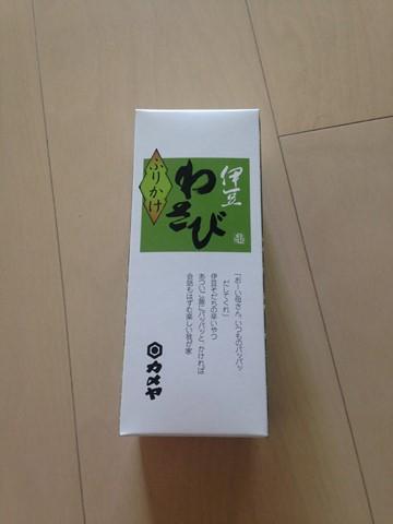 伊豆 (195) (コピー)