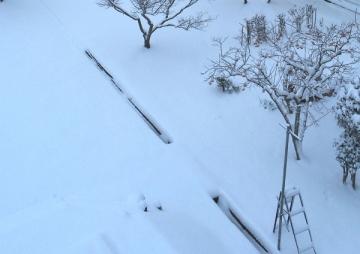 降雪 (2)_600