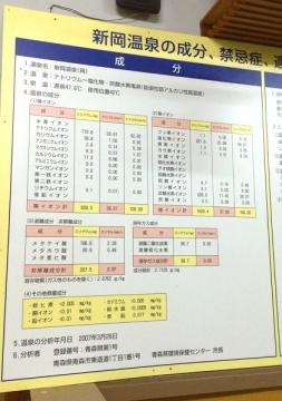 新岡温泉 (1)_600