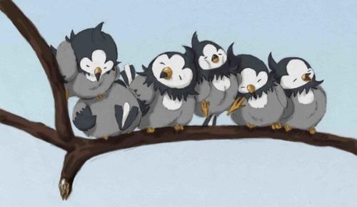 ポケモンみたいな小鳥たち