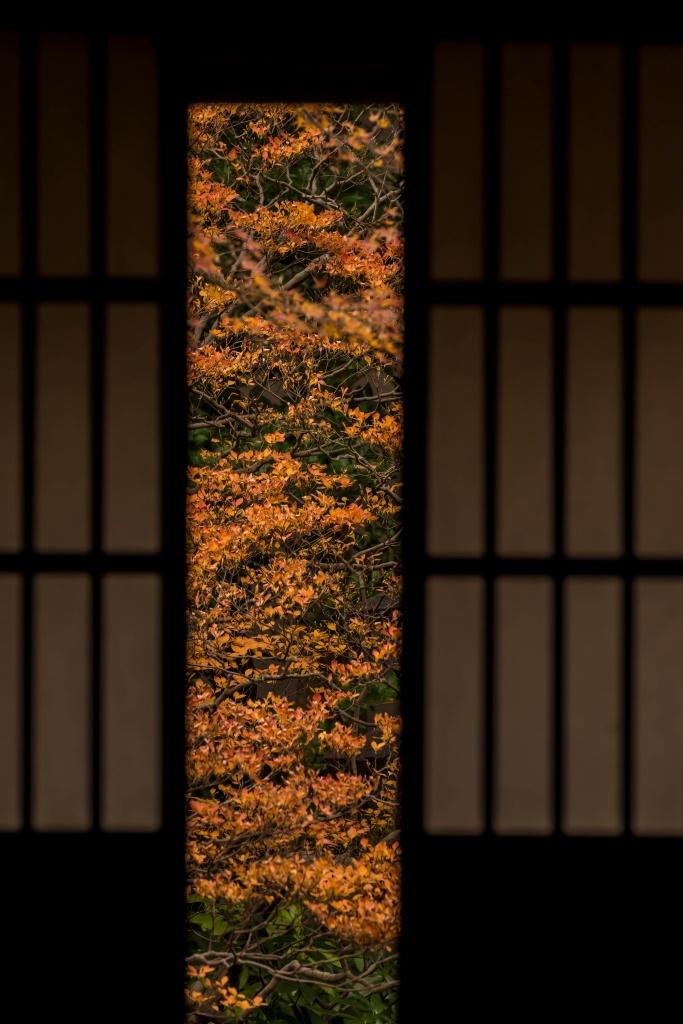 2015.12.06寺島蔵人邸2