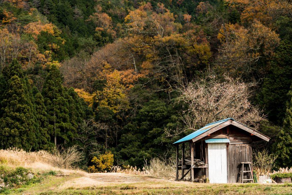 2015.12.05鶏足寺2