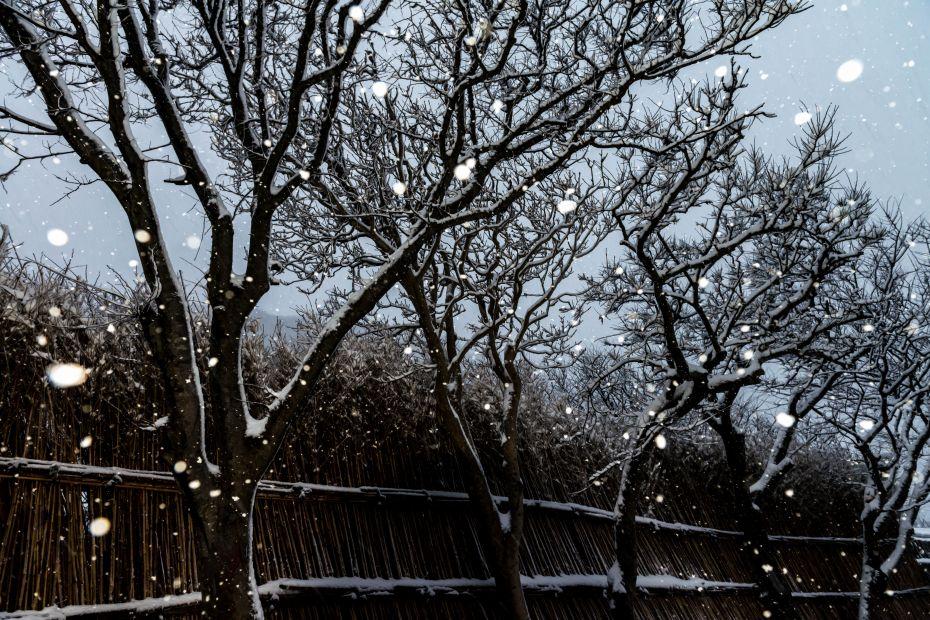 2016.01.24上大沢の雪景色7