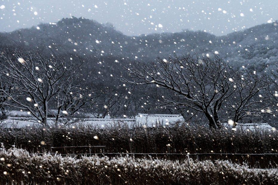 2016.01.24上大沢の雪景色4