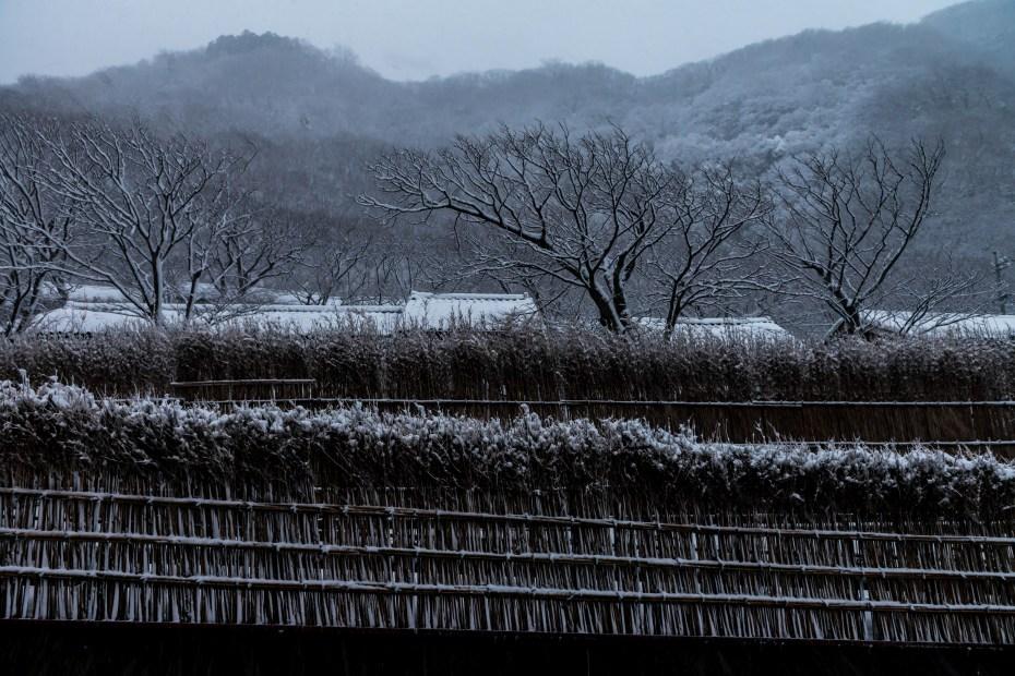 2016.01.24上大沢の雪景色2