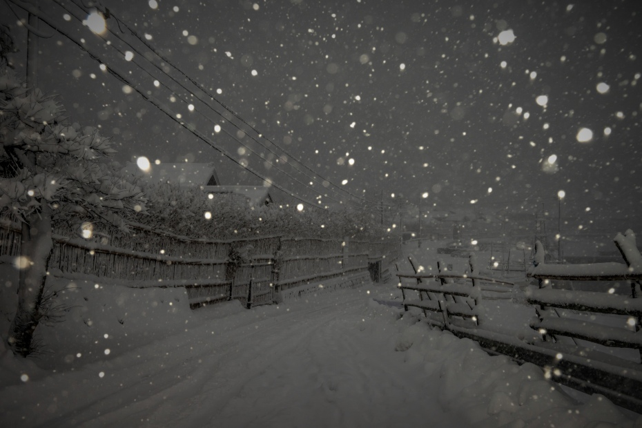 2016.01.24大沢の雪景色11