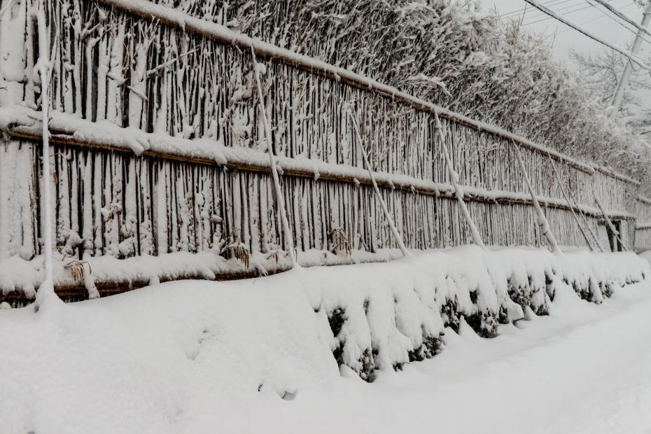 2016.01.24大沢の雪景色6