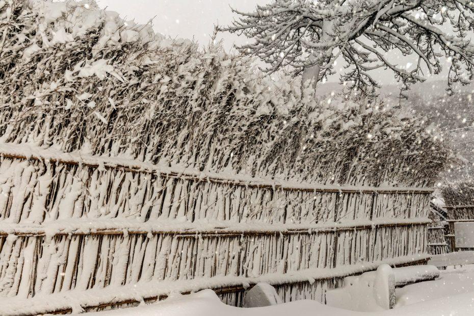 2016.01.24大沢の雪景色5