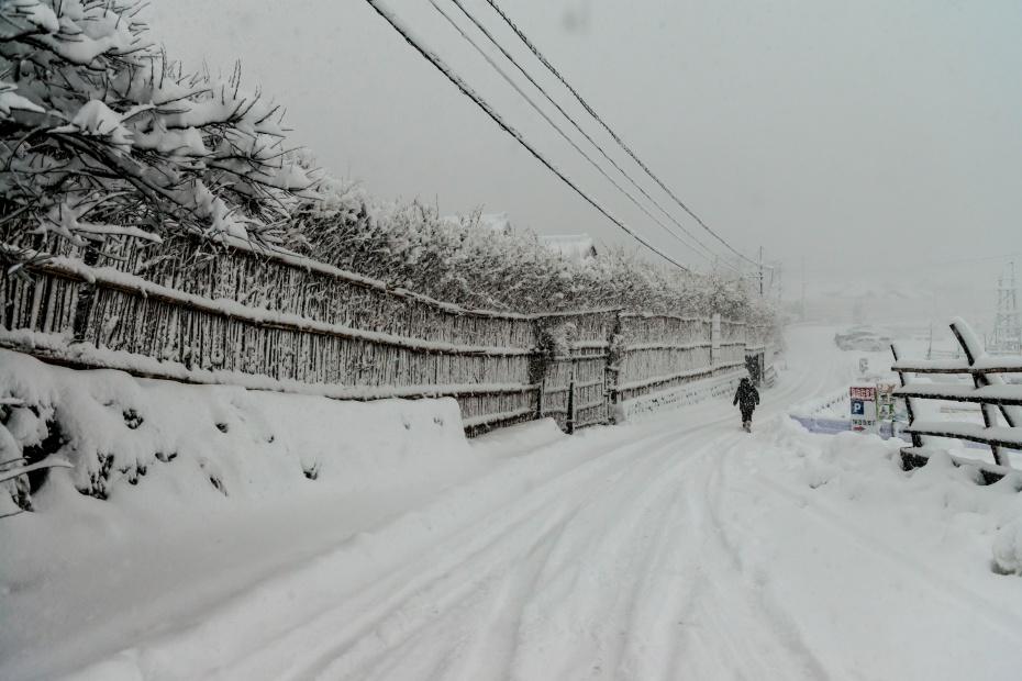 2016.01.24大沢の雪景色4