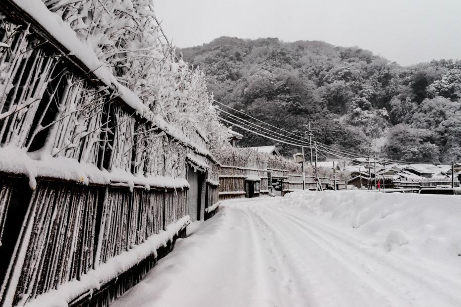 2016.01.24大沢の雪景色3