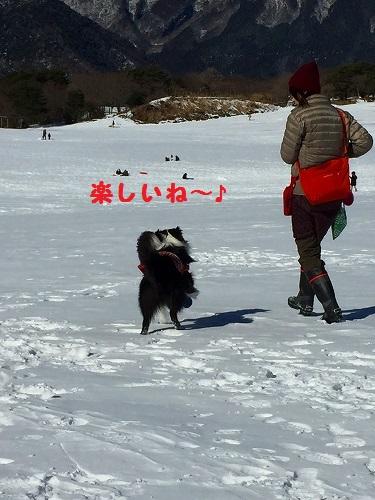 s-IMG_2201.jpg