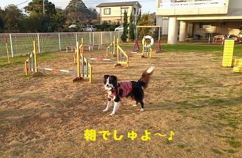 s-_20151222_150547.jpg