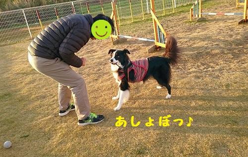 s-_20151222_150610.jpg