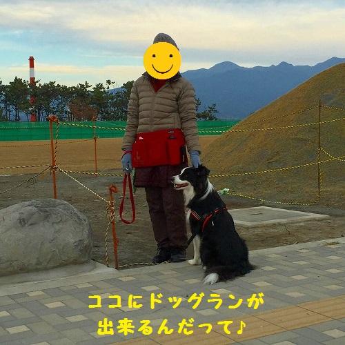 s-_20160104_192945.jpg