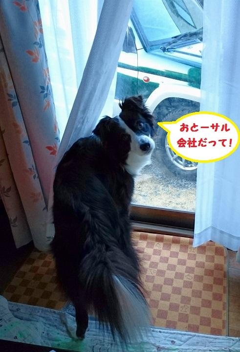 s-_20160120_162517.jpg