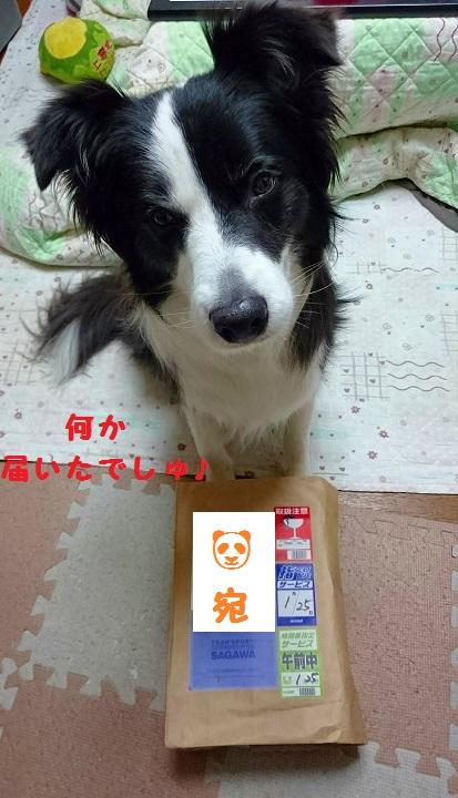 s-_20160126_095131.jpg