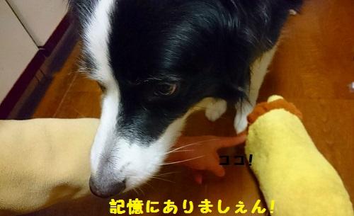 s-_20160203_161928.jpg