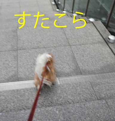 20160123 (21)