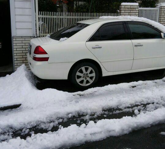 0118雪www