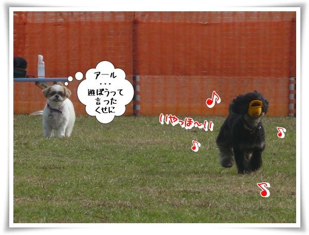 P1130292_1.jpg