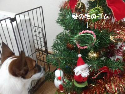 20151125クリスマスツリー④