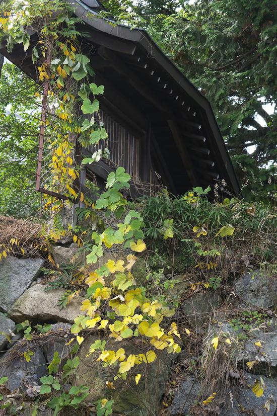 姫路城-167
