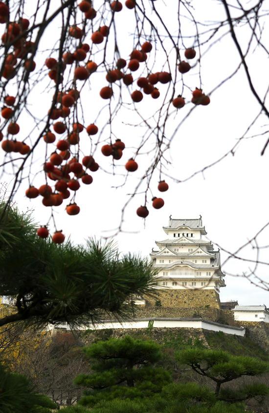 姫路城-140-173