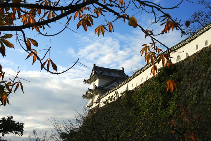 姫路城-184