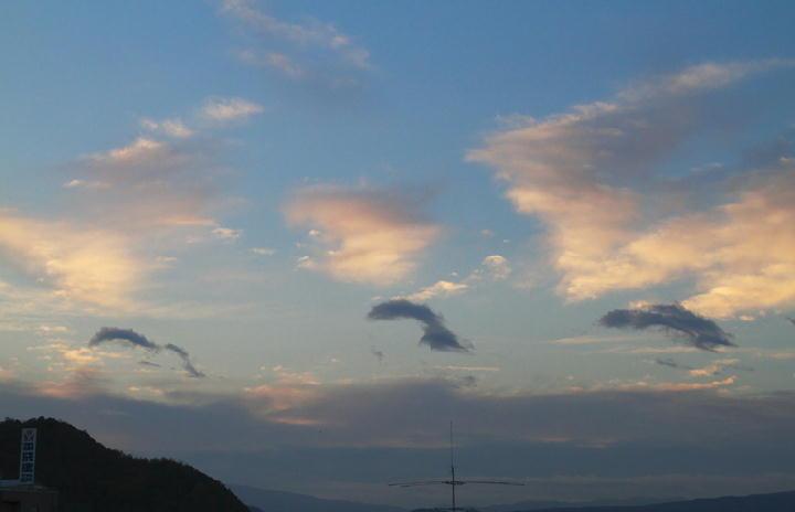 12月7日 6-51 イルカ雲