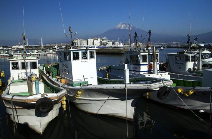 田子の浦港-230