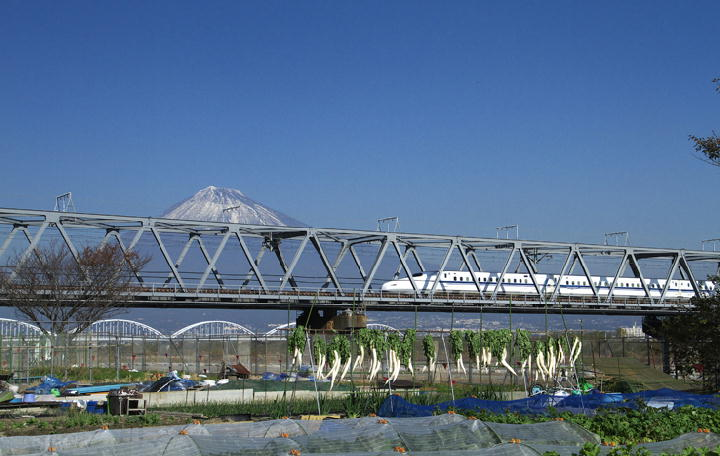 富士川河川敷-340