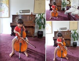 cello5_2016012818254195e.jpg