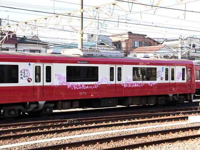 1072_sakura_160213.jpg
