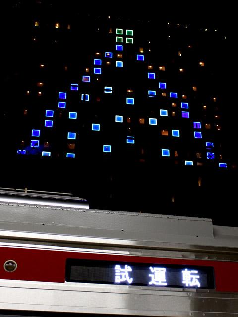 1367_tree_151202.jpg