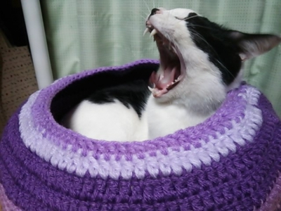 猫用ベッド アクリルの毛糸 壺形