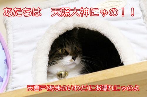 IMG_0089-2.jpg