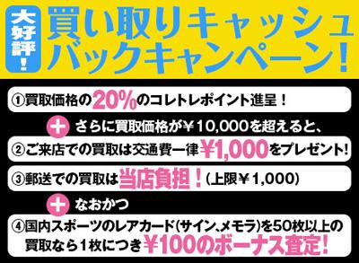 campaign-2015-2.jpg