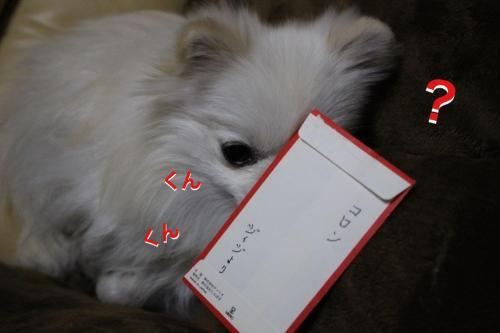 16-0103-1.jpg