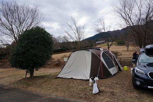 キャンプ夜10