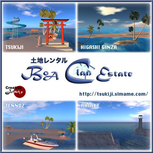 BoaSIM-poster-Square20120622.jpg