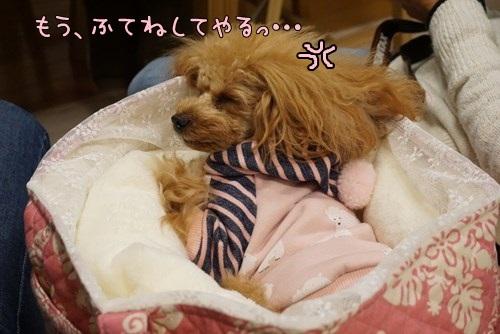 Rうち_6659_S