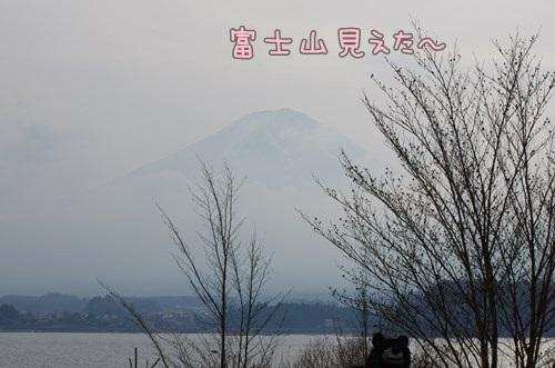RK52G1902_Y.jpg