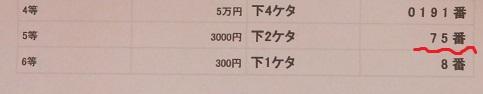 PC130002.jpg